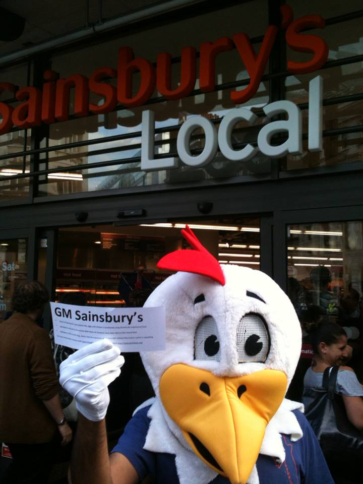 A giant chicken handed out information about GM food to passers-by in Holborn, next to Sainsbury's Head Office in Central London 03/09/2013