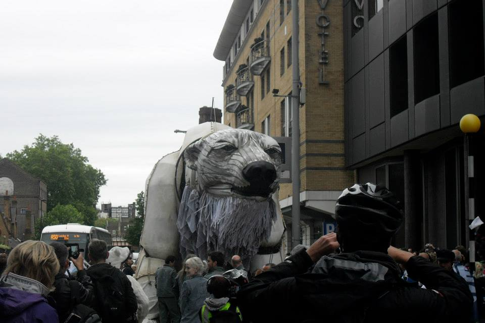 Aurora the Artic polar bear is the same size as a double decker bus!