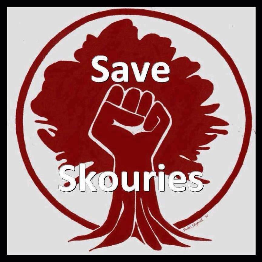 save-skouries