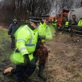 BartonMoss. Saturday 15/02/2014. Arrested woman being dragged by her feet.