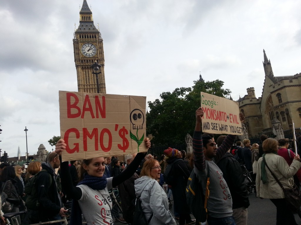 March Against Monsanto passing by the Clock Tower/BigBen.