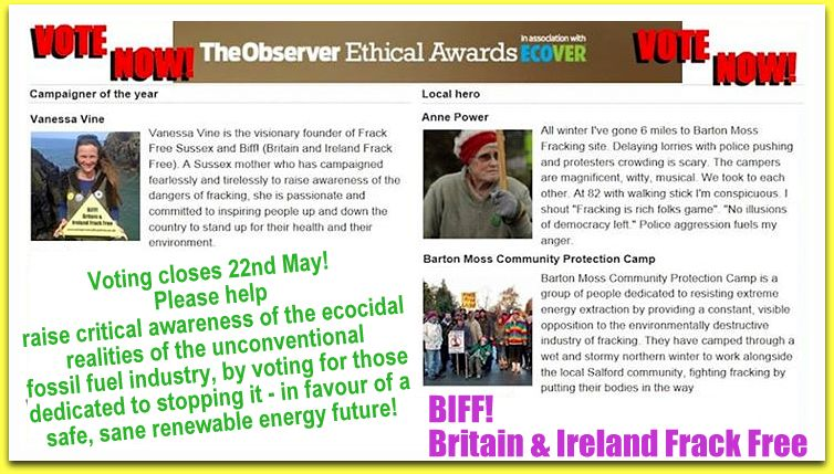 BIFF_Observer Awards